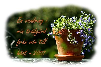 gardensommar2007.jpg