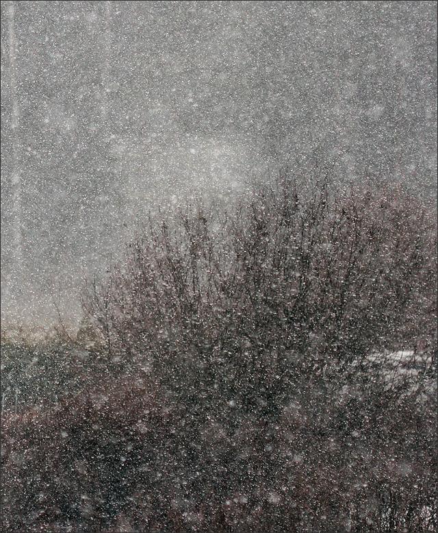 20131018_BF_Snow