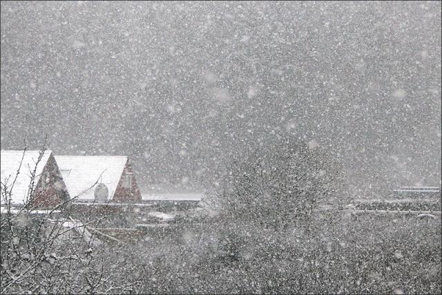 20140111_Snowstorm