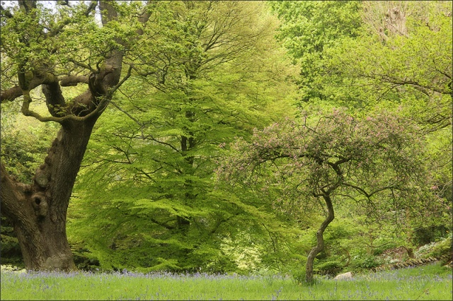 20140506_HolkerHall_05