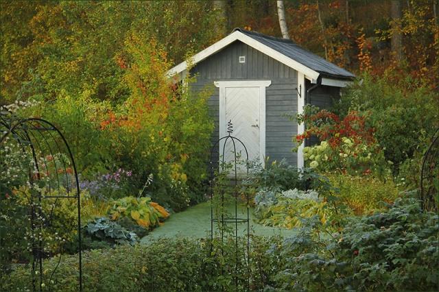 20141001_GardenColors