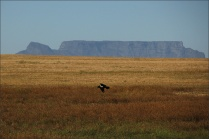 20141026_Sydafrika01