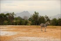 20141027_Sydafrika03