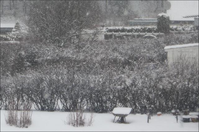 20140221_Snow