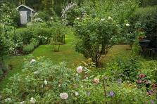 20140801_30_Garden03
