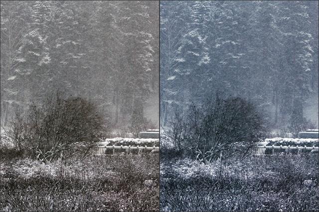 20150112_Snowfall