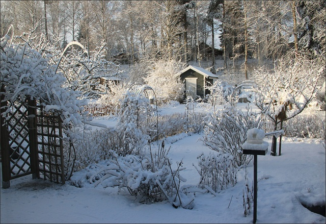 20150321_Snow01