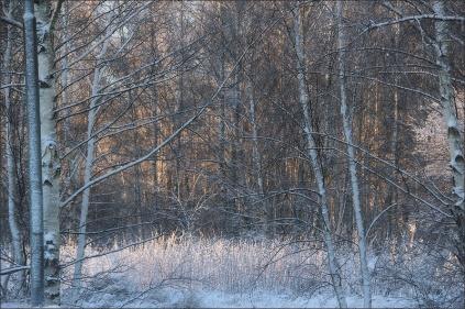20151228_Vinterdag01