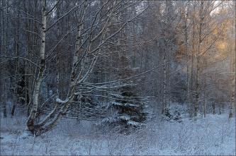 20151228_Vinterdag04