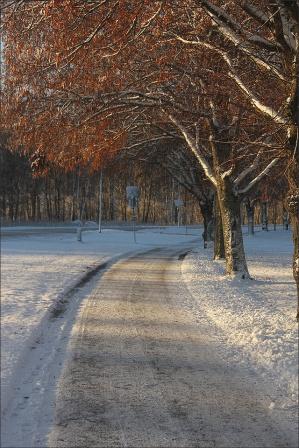 20151228_Vinterdag06