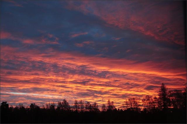 20161031_morninglight