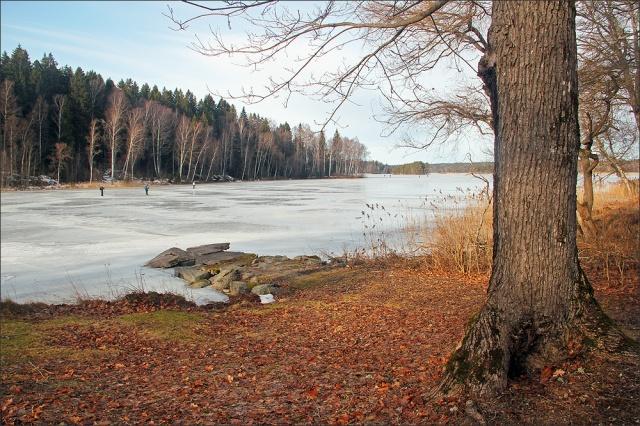 20170218_isskridskoakare