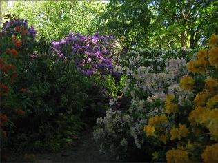 20170601_BotaniskaLund11